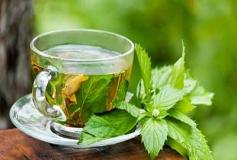 فواید چای سبز برای جوانسازی پوست