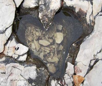 سنگ مرداب چه عوارض پوستی دارد؟